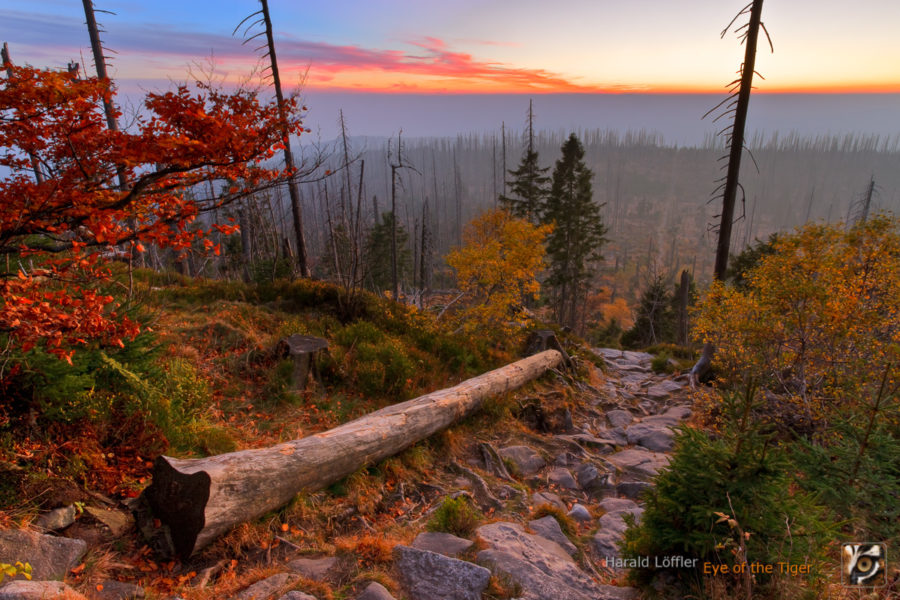 HL6 20101013 0009 10 12 900x600 - Landschaft