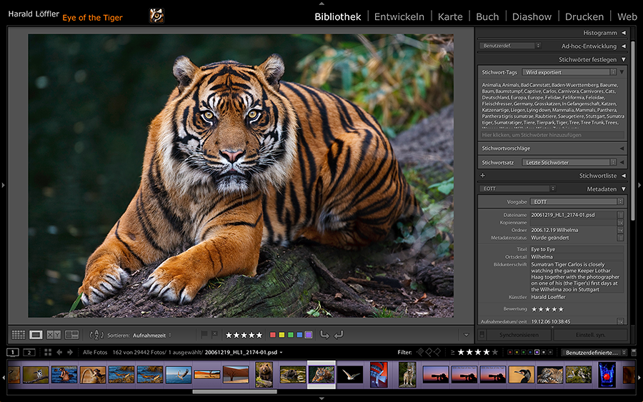 Lightroom Basis-Workshop