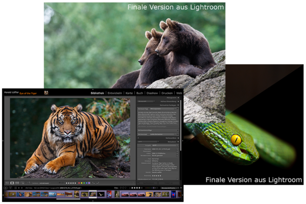 LR-Komplett-Workshop – Alle drei Lightroom-Workshops zum Sonderpreis