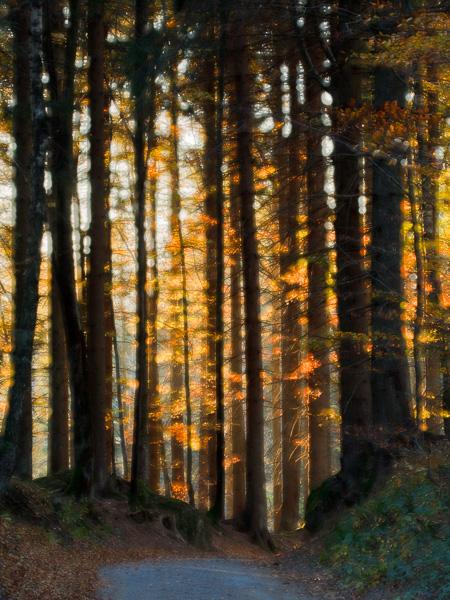 Workshop: Grundlagen der Landschaftsfotografie