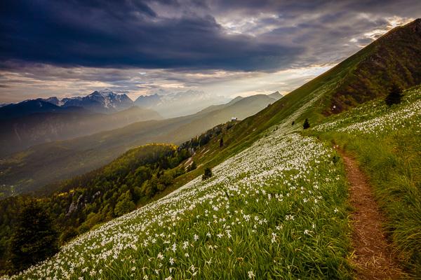WS Land Grad 03 - Grauverlaufsfilter – Landschaftsfotografie Intensiv-Workshop