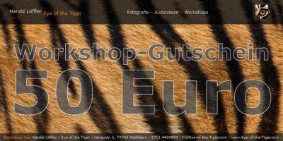 Workshop-Gutschein im Wert von 50,- Euro