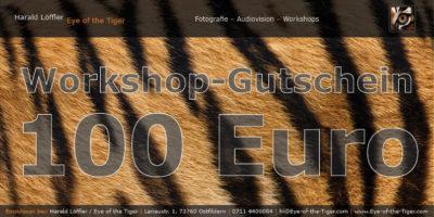Workshop-Gutschein im Wert von 100,- Euro