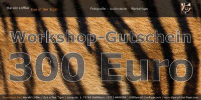 Workshop-Gutschein im Wert von 300,- Euro