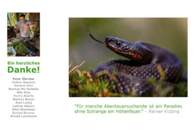 Snakes 16 400x266 - Snakes – Faszination Schlangen (eBook)