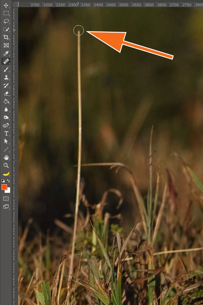 "LTM002 3 01 PS Stempel First Click - Lightroom-Tipp #2: ""Gerade Linien mit Shift"""