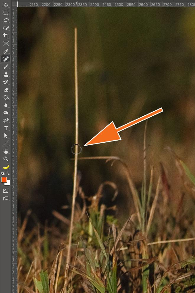 """LTM002 3 02 PS Stempel Second Click - Lightroom-Tipp #2: """"Gerade Linien mit Shift"""""""