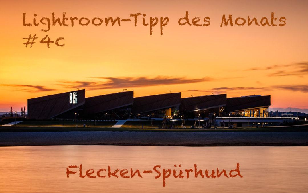 """Lightroom-Tipp #4c: """"Flecken-Spürhund"""""""