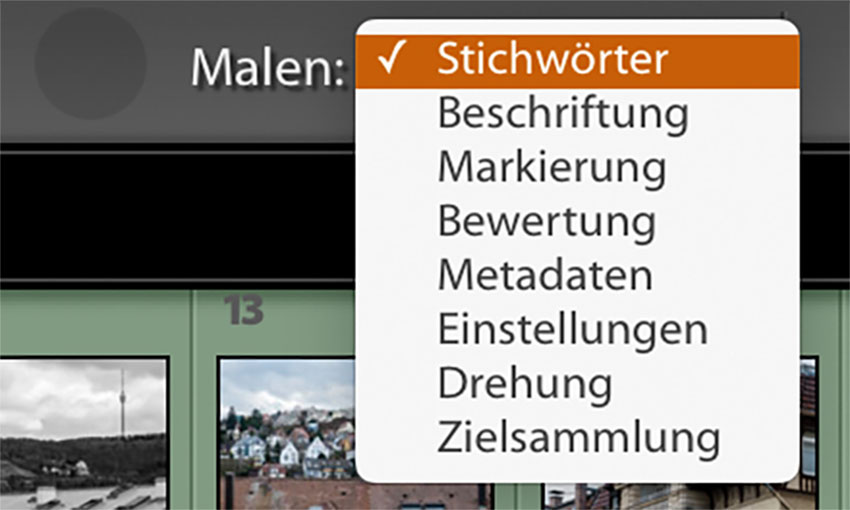 "LTM005 03 Optionen - Lightroom-Tipp #5: ""Stichwort-Graffiti"""