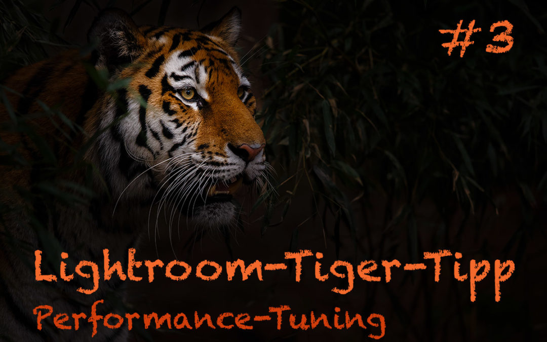 "Lightroom-Tiger-Tipp #3: ""Performance-Tuning"""
