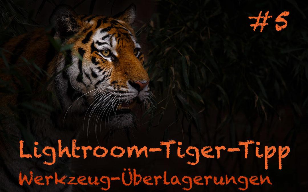 """Lightroom-Tiger-Tipp #5: """"Werkzeugüberlagerungen"""""""