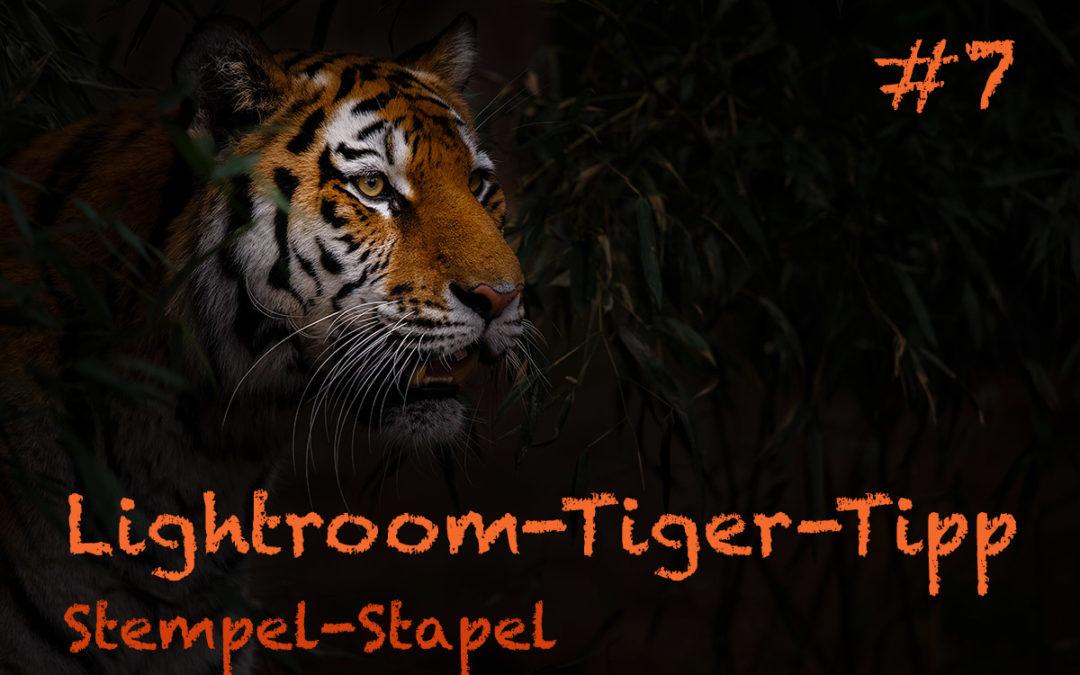 """Lightroom-Tiger-Tipp #7: """"Stempel-Stapel"""""""