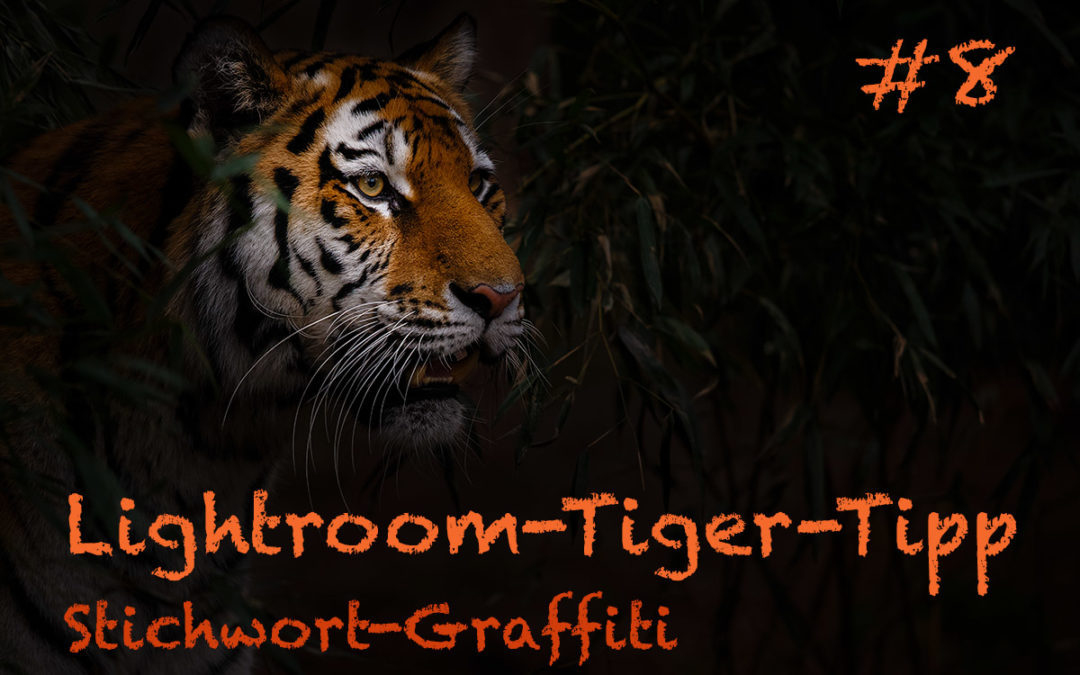 "Lightroom-Tiger-Tipp #8: ""Stichwort-Graffiti"""