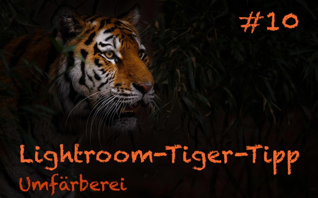 "Lightroom-Tiger-Tipp #10: ""Umfärberei"""