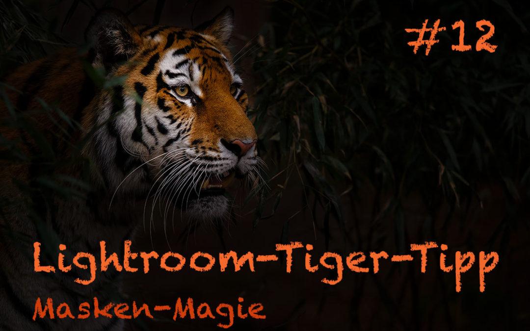 """Lightroom-Tiger-Tipp #12: """"Masken-Magie"""""""