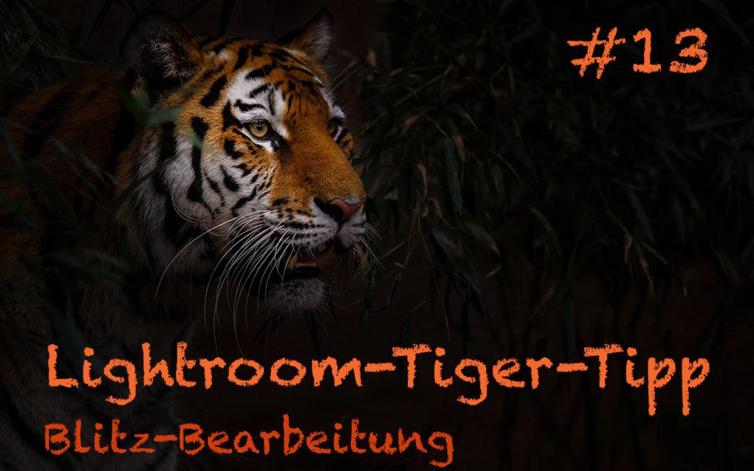 "Lightroom-Tiger-Tipp #13: ""Blitz-Bearbeitung"""