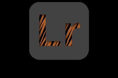 LR Export Presets 400x267 - LR Export-Presets