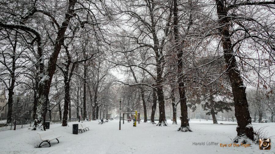 20210117 HLB 7161 900x506 - Ein kalter Januarmorgen