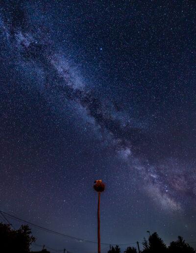 20210710 HLA 4486 01 400x516 - Milkyway extrem